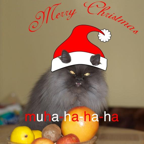 Merry Puffmas